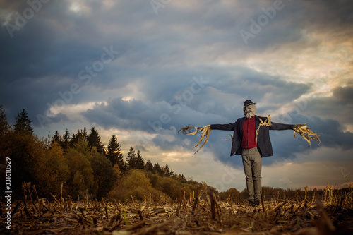 Fotografia scarecrow stands in the autumn field against the evening sky