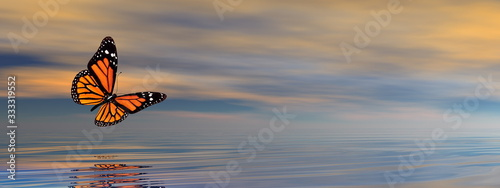 Butterfly flying upon the ocean by sunset - 3D render