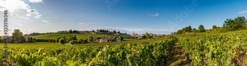 Fotografie, Tablou Panorama de Saint Emilion en été