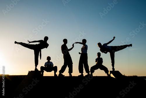 Wallpaper Mural kung fu warriors train against sunset sky