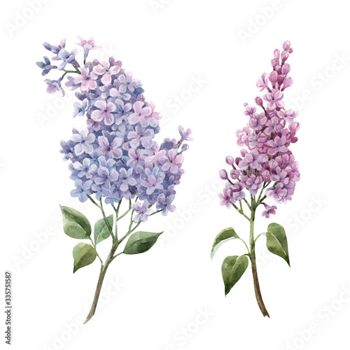Canvas-taulu Beautiful watercolor floral set with pink lilac flowers