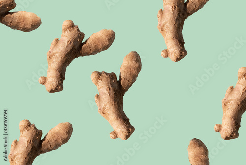 Fotografiet ginger root on green background