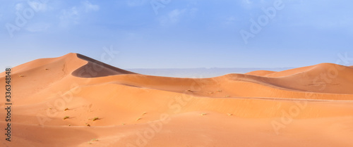 Fotografia Sand Dune in the Sahara / In the Sahara Desert, sand dunes to the horizon, Morocco, Africa