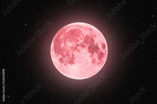 Canvas Print Pink full super moon glowing with pink halo surrounded by stars on black sky bac