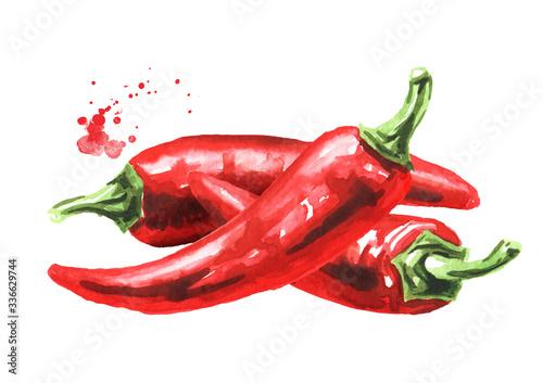 Carta da parati Red hot chili pepper, Hand drawn watercolor illustration  isolated on white back