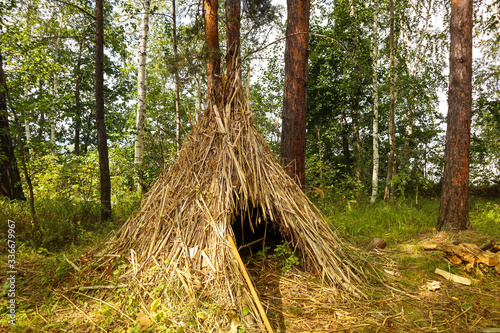 Tablou Canvas Simple shelter of dry grass in the forest