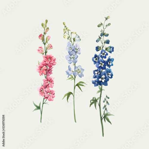 Photo Beautiful vector watercolor floral set with pink, white and blue delphinium flowers
