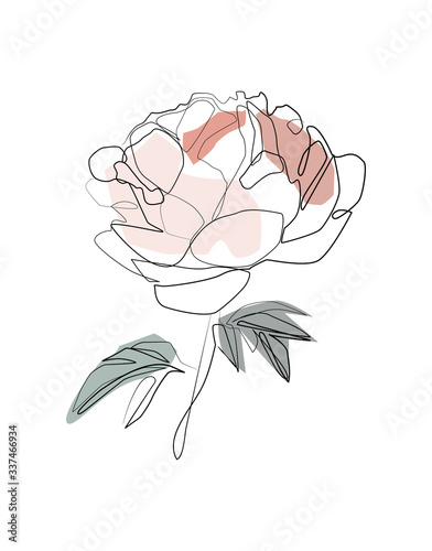 Fotografia Bouquet of peony in one line art drawing style