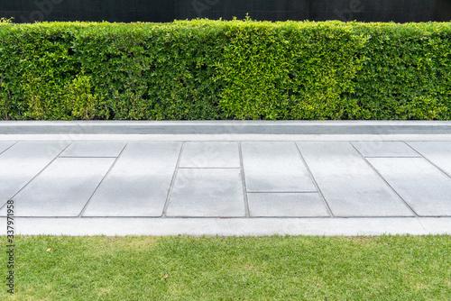 Carta da parati Concrete walkway in the park with green grass,