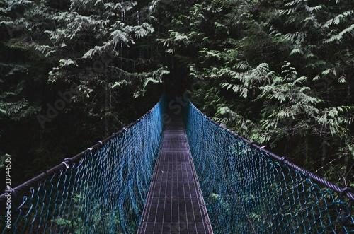 Footbridge Over Trees At Forest Fototapet
