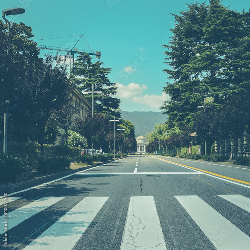 Fotografie, Tablou Empty Road Along Trees