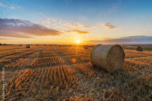 Canvas-taulu Hay Bales On Field Against Sky During Sunset