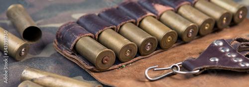 Stampa su Tela shotgun, hunting cartridges, hunting ammunition
