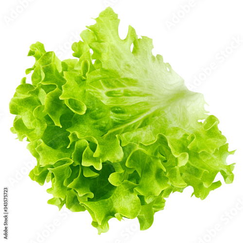 Canvas Print salad, lettuce leaf, isolated on white background, clipping path, full depth of