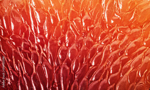 Canvastavla Grapefruit slice background