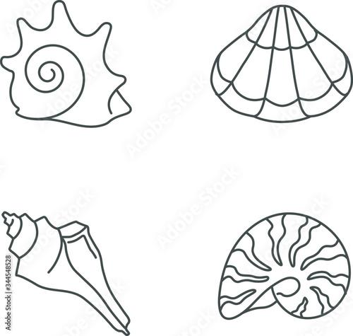 Slika na platnu Various seashells pixel perfect linear icons set