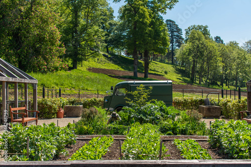 A green organised vegetable garden in the heart of the English countryside Fototapeta