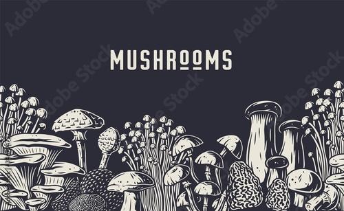 Valokuva Autumn forest mushroom picking, vegan menu pattern