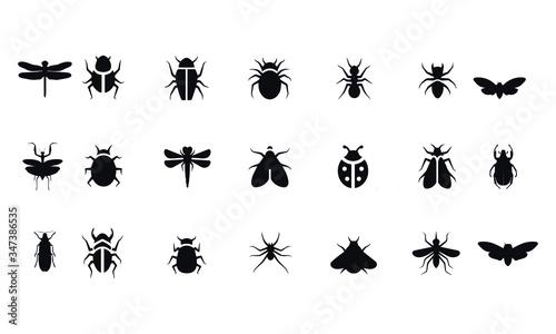 Foto Insect icon set vector design