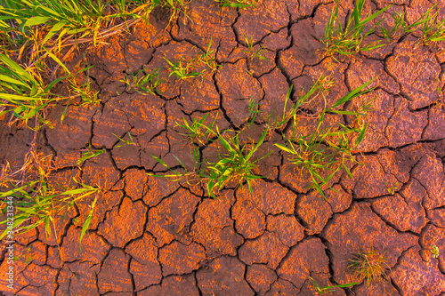 Canvas Print Cracked earth, metaphoric for climate change and global warming