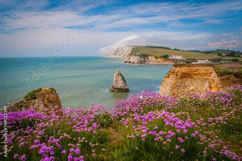 Obraz na plátně Freshwater Bay at the Isle of Wight, UK