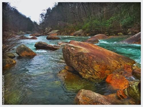Vászonkép Scenic View Of North Chickamauga Creek