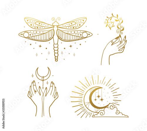 Obraz na płótnie Set of beautiful golden mystical elements in boho style, dragonfly, crescent, female hands