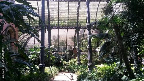 Valokuva View Of Interior Of Glasshouse