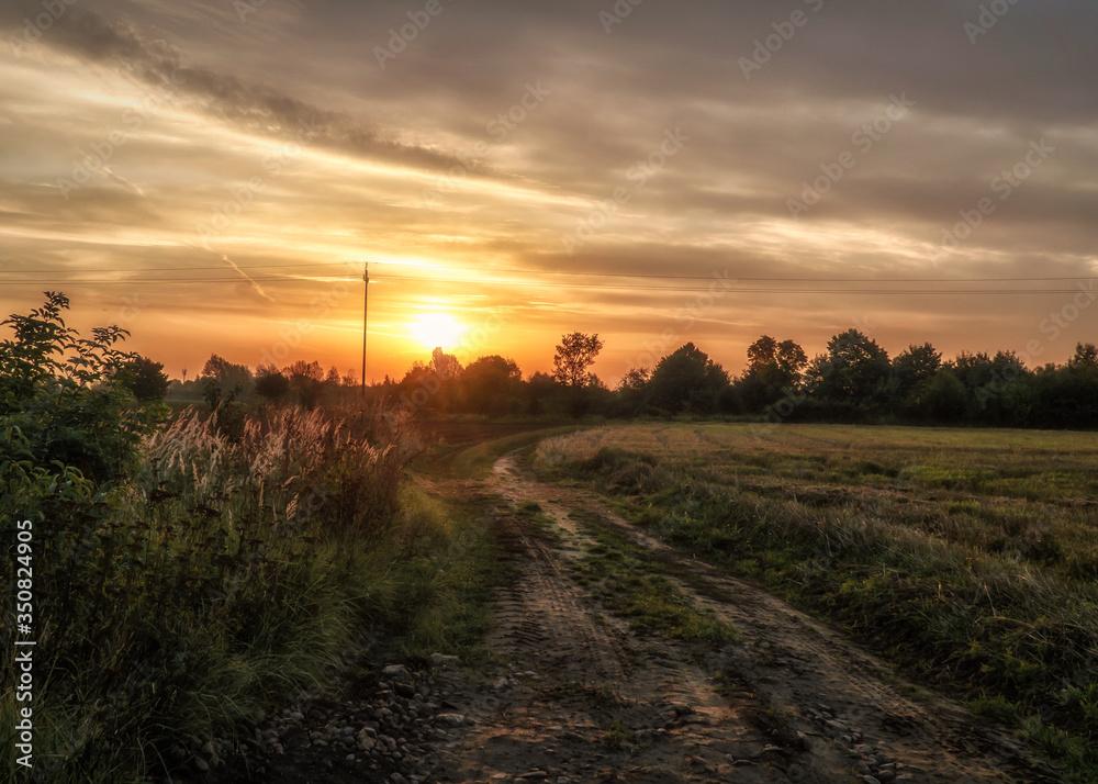 Polna droga podczas wschodu słońca