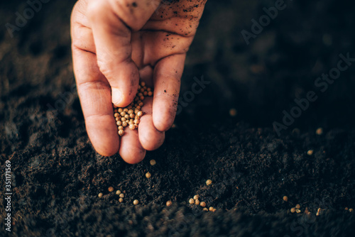 Photo Hand growing seeds on sowing soil