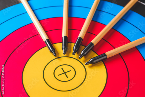 Fényképezés Arrows for archery on target, closeup