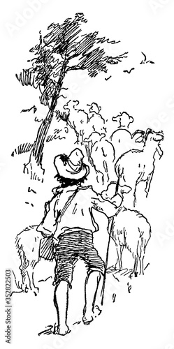 Tablou Canvas Boy Herding Goats, vintage illustration