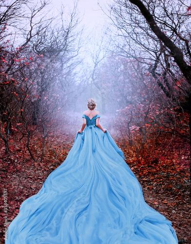 Artwork photo Beautiful silhouette woman princess Cinderella in autumn foggy mystic forest tree Fototapeta
