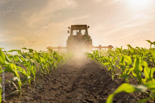 Tractor harrowing corn field Fototapeta