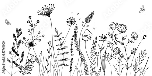 Wallpaper Mural Black silhouettes of grass, flowers and herbs isolated on white background