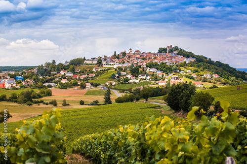 Vue de la ville de Sancerre avec des vignes en premier plan Fototapeta