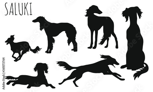 Canvas-taulu Saluki - Dog Race | Hunderasse | Windhund | sighthound | Greyhound