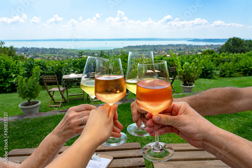 Fototapeta toast with wine in a vineyard bar with a nice view of Lake Balaton on a nice sum