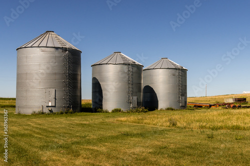 Wallpaper Mural Grain storage silos in the afternoon sun at a farm in the rolling hills near Man