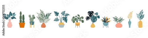 Photo Urban jungle, trendy home decor with plants, cacti, tropical leaves in stylish planters and pots