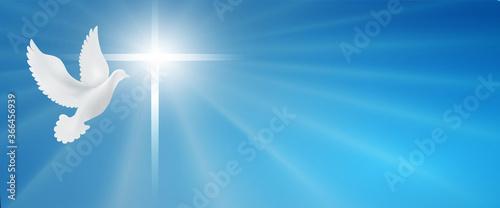 Fotografering Dove whit christian cross symbol
