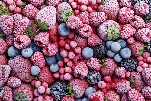 Canvas Print Mix of different frozen berries as background, top view