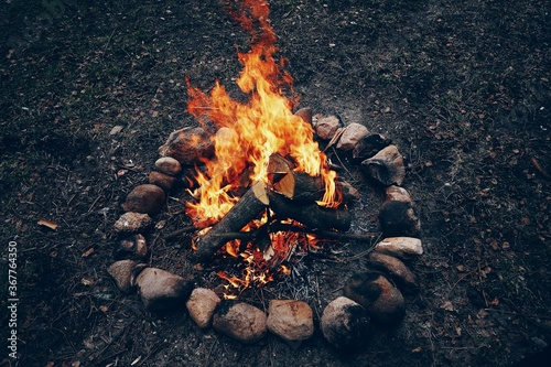 Photo Bright campfire in the nature. High quality photo