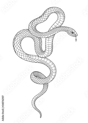 Canvas Print Vector Hand Drawn Monochrome Snake