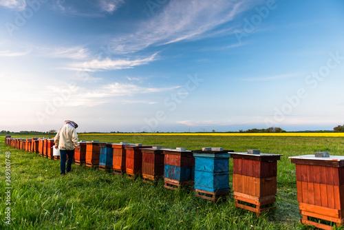 Foto Beekeeper or Apiarist Working on Beehives Outdoor at Meadow