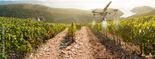 Fotografia Drone sprayer flies over the vineyard