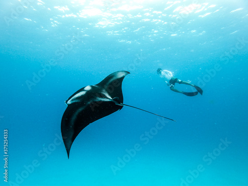 Photo Male free diver and Giant oceanic manta ray, Manta Birostris, hovering underwater in blue ocean