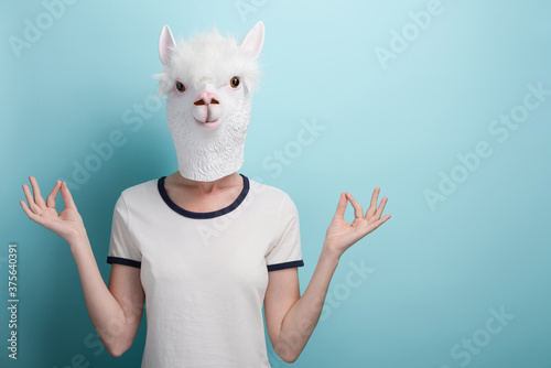 Obraz na plátne Young woman wearing alpaca mask