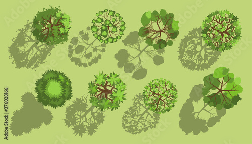Wall mural Trees with a realistic shadow. Top view. Different plants and trees vector set for architectural or landscape design. (View from above) Nature green spaces.