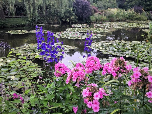 Obraz na plátně Flowers and nympheas in Monet's garden - 2016 - Giverny, France